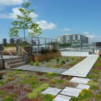 Green Roof Installation, Association for Energy Sustainability, Bronx, New York, 2011.