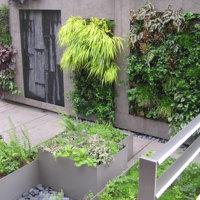 Green wall, Waverly Place Penthouse, Manhattan, New York, 2010.