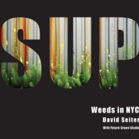 Cover of Spontaneous Urban Plants: Weeds in NYC by David Seiter with Future Green Studio, 2016.